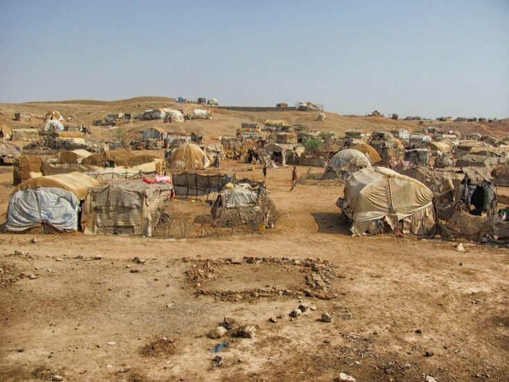 The Jesuit Justice and Ecology Network – Africa (JENA) joins the rest of the world in commemorating World Migrant and Refugee Day (WMRD) to highlight the plight of refugees and to celebrate their courage and resilience